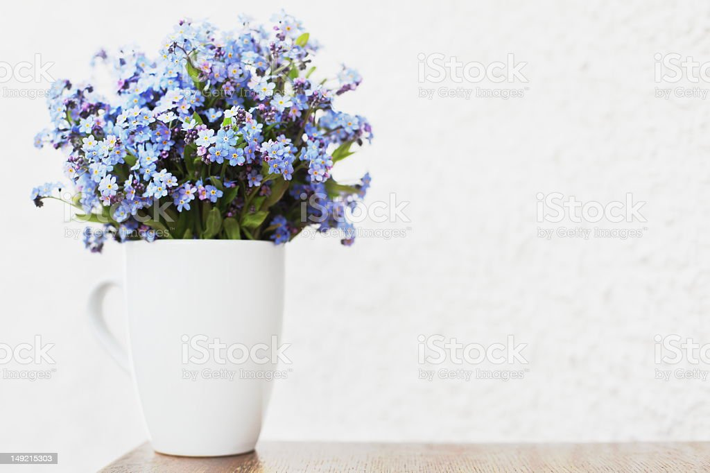 Bunch of forget-me-nots flowers royalty-free stock photo