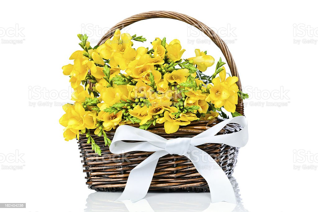 Bunch of Freesia flowers in the wicker royalty-free stock photo