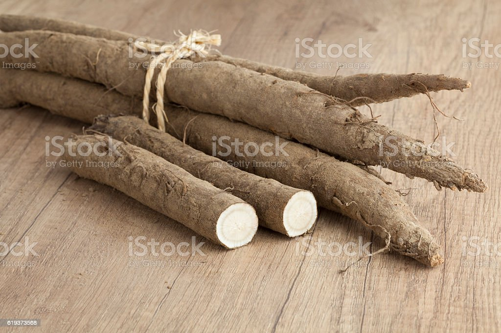 Bunch of fresh burdock taproots stock photo