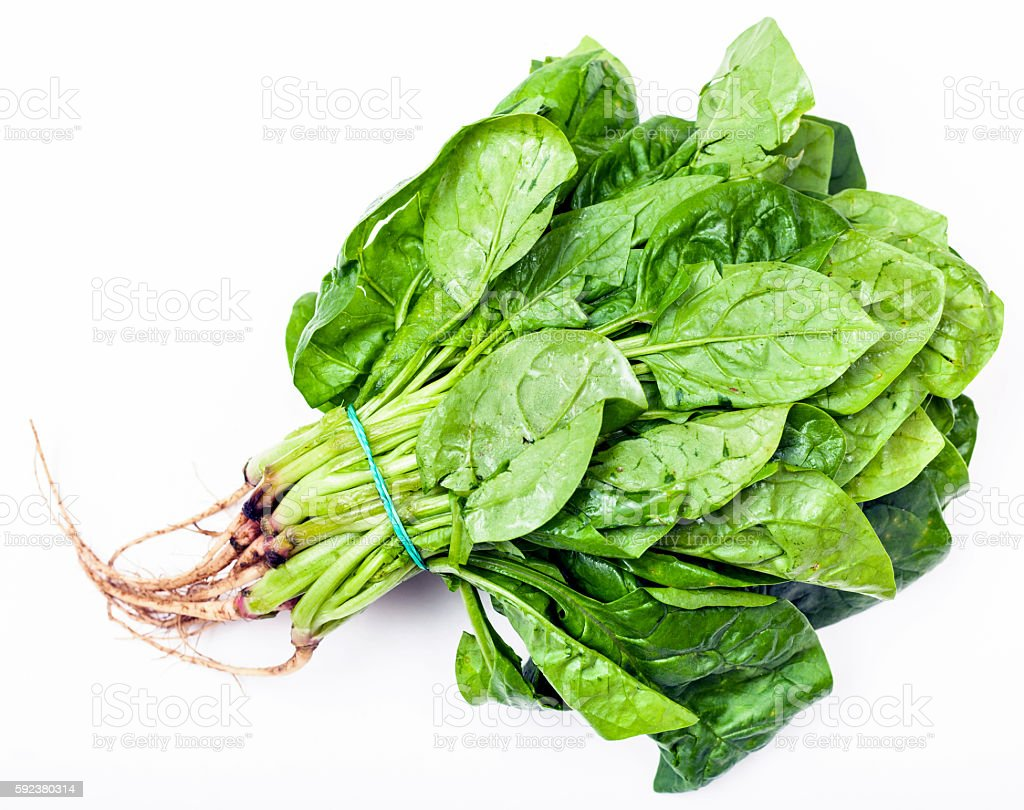 bunch of fresh green spinach herb on white stock photo