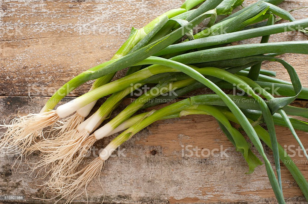 Bunch of fresh green spring onions stock photo
