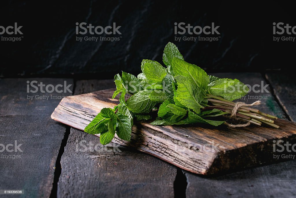 Bunch of fresh mint stock photo