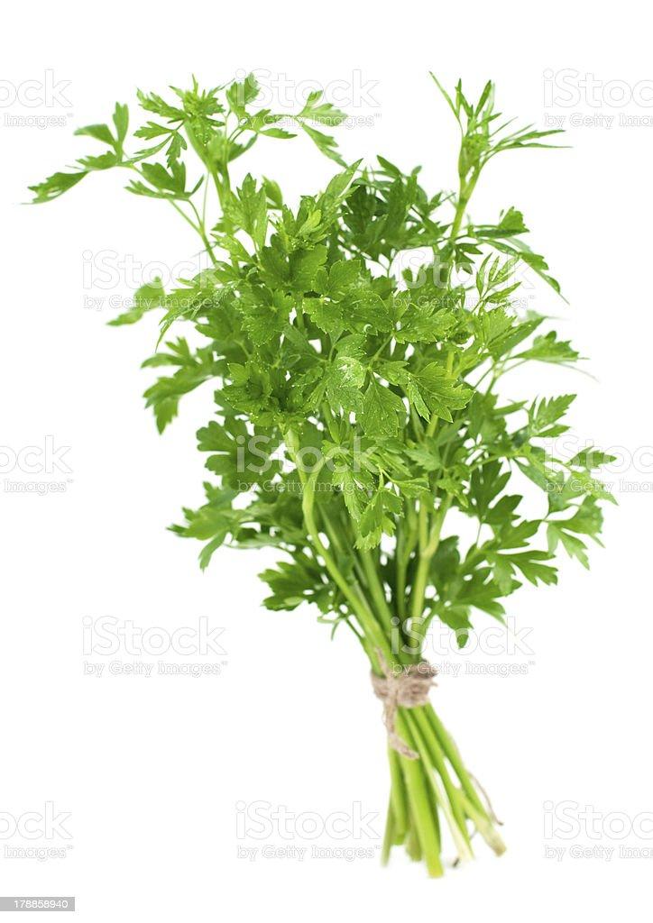 Bouquet de persil frais photo libre de droits