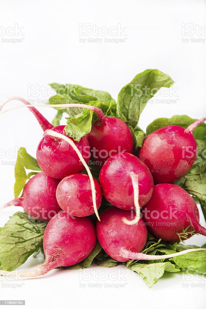 bunch of fresh red radish with leaf royalty-free stock photo
