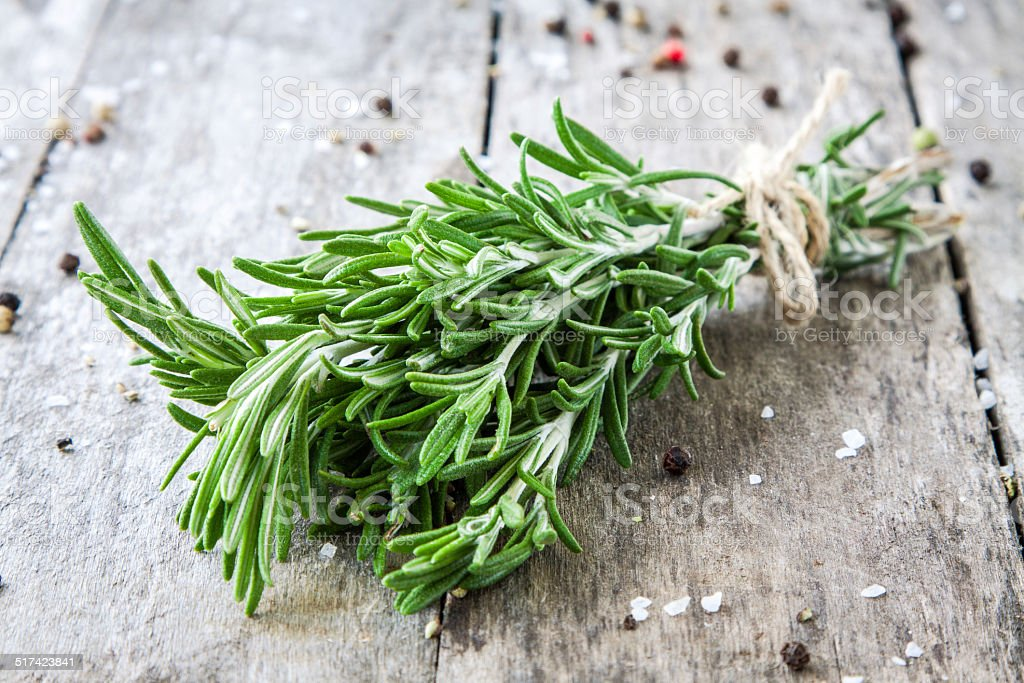 bunch of fresh rosemary stock photo