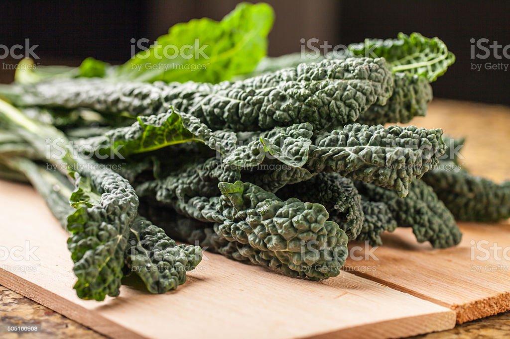 Bunch of freshly harvested lacinato kale stock photo