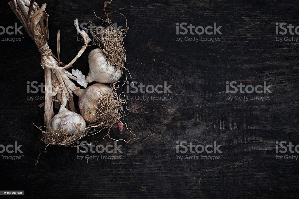 Bunch of garlics stock photo