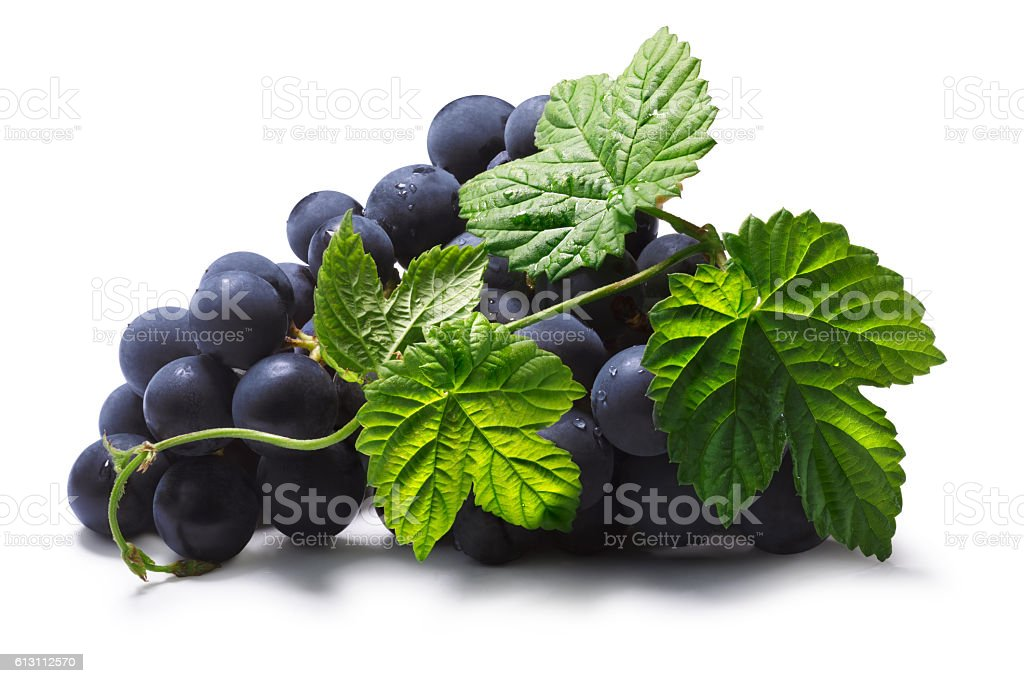 Bunch of grape with leaves, paths stock photo