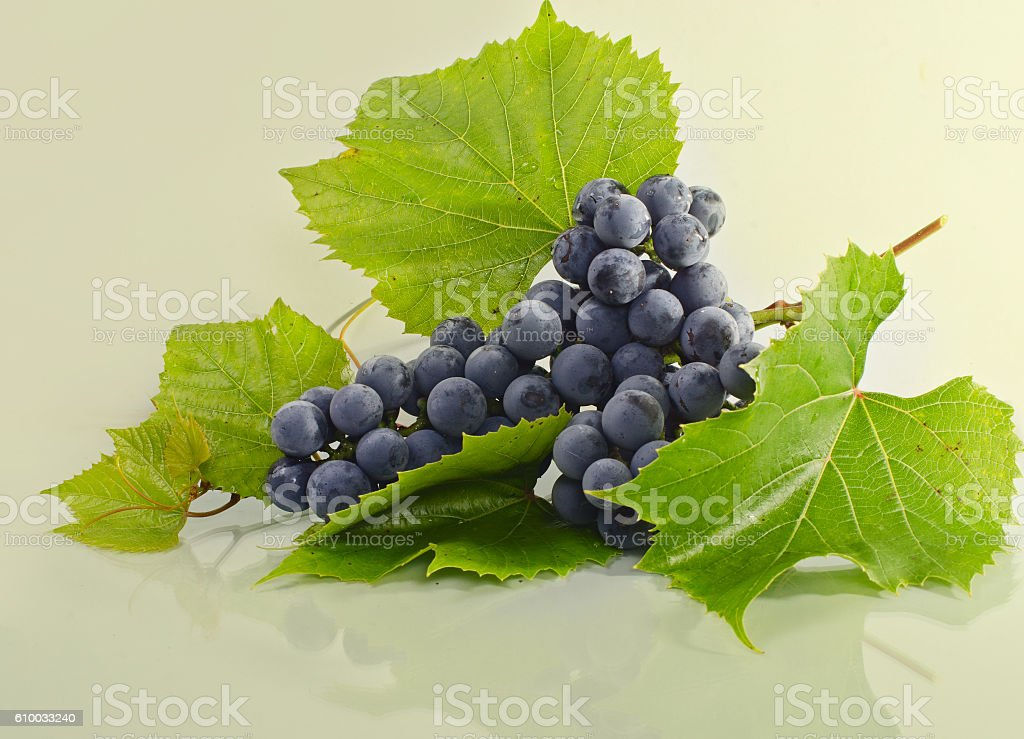 bunch of grapes lying on the surface of the light stock photo