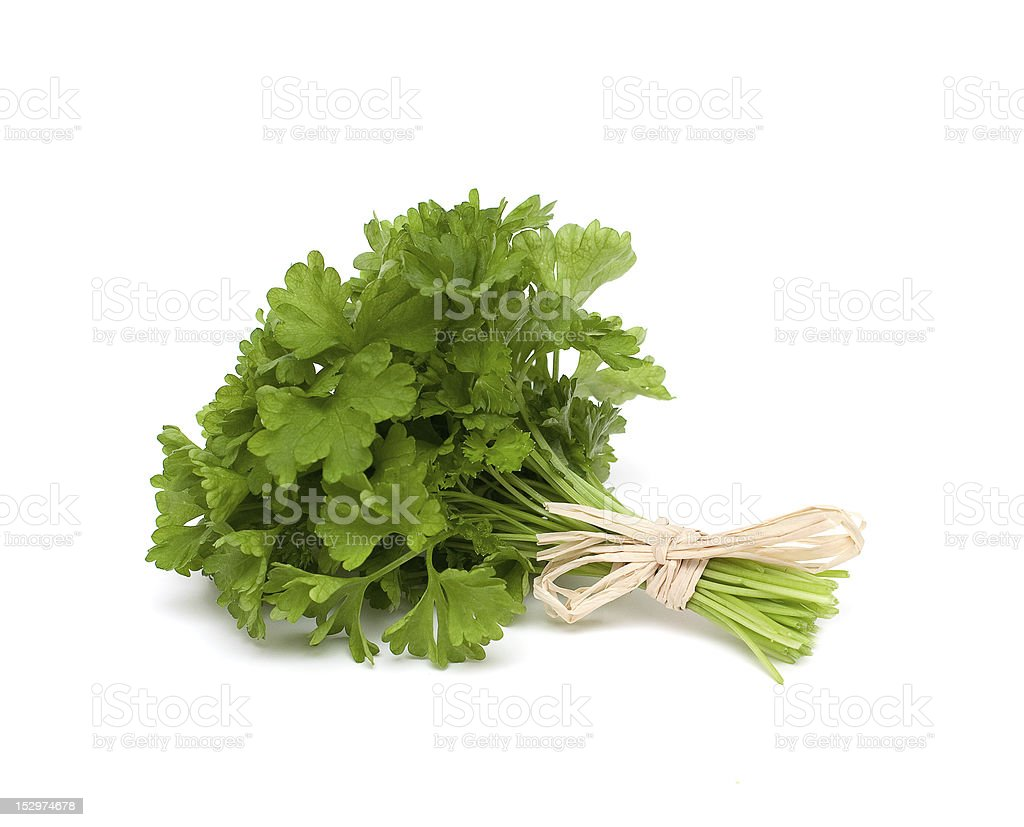 A bunch of green parsley tied together stock photo