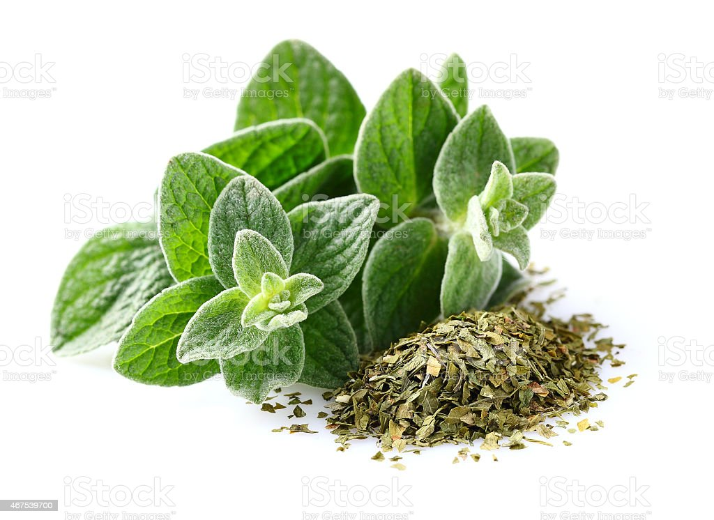 Bunch of ground oregano with green oregano leaves stock photo