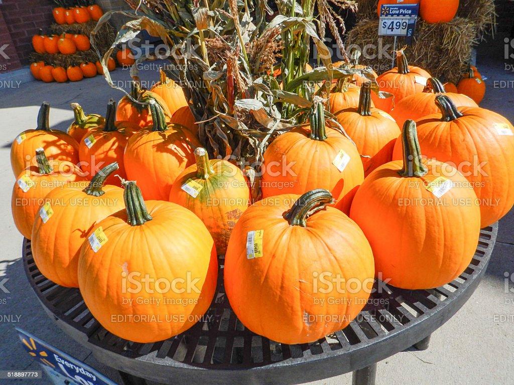 bunch of halloween pumpkin stock photo