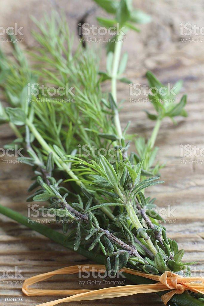 bunch of herbs stock photo
