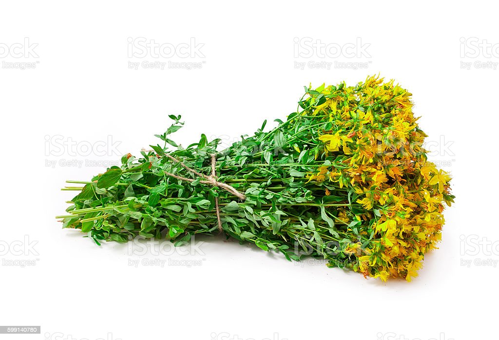 Bunch of hypericum perforatum, St. john's worth herb stock photo