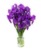 bunch of iris flowers