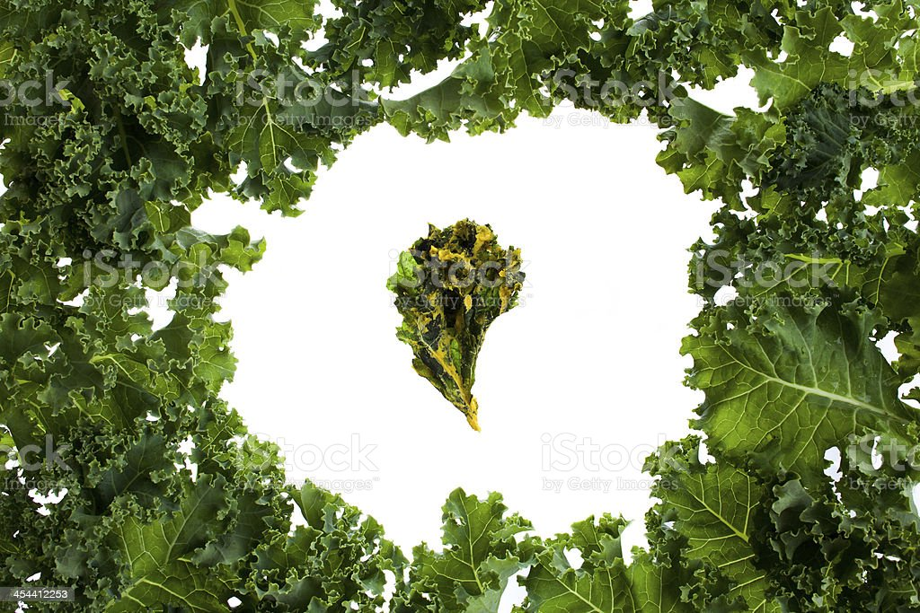 Bunch of kale leafs with a chip in the middle royalty-free stock photo