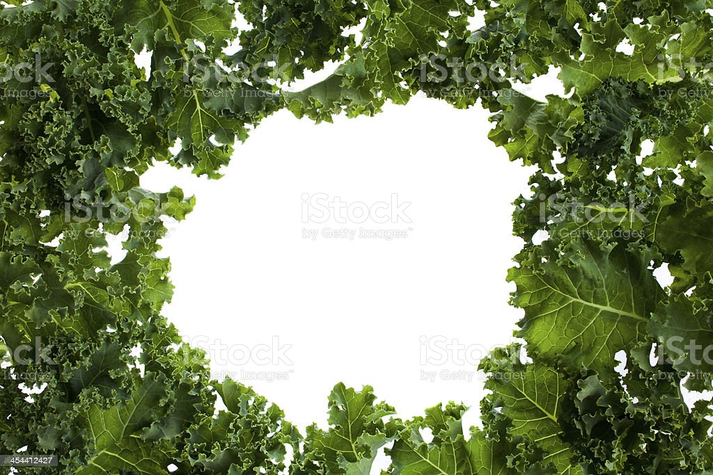 Bunch of kale with a white background in the middle stock photo
