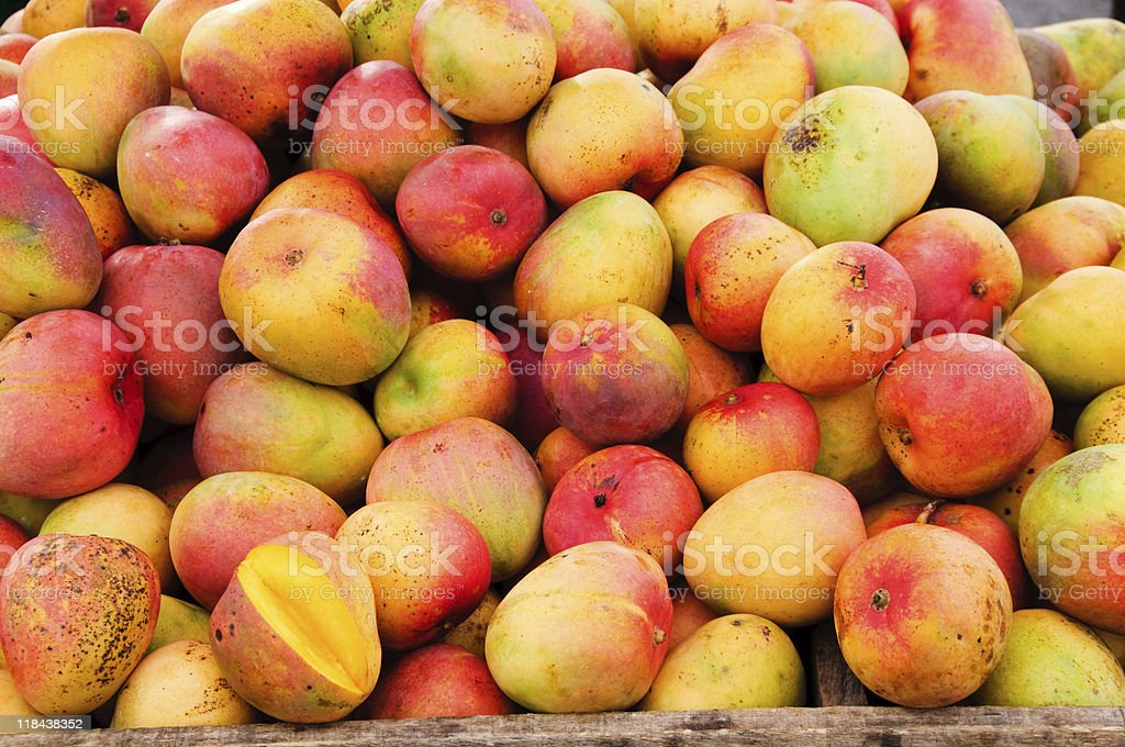 Bunch of mangoes at a fruit stand stock photo