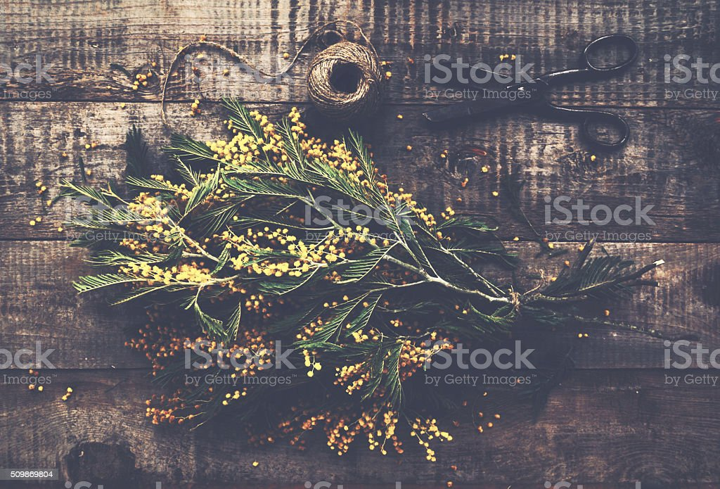 Bunch of mimosa, vintage scissors and rope on wooden table stock photo