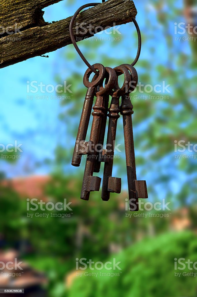 bunch of old keys royalty-free stock photo