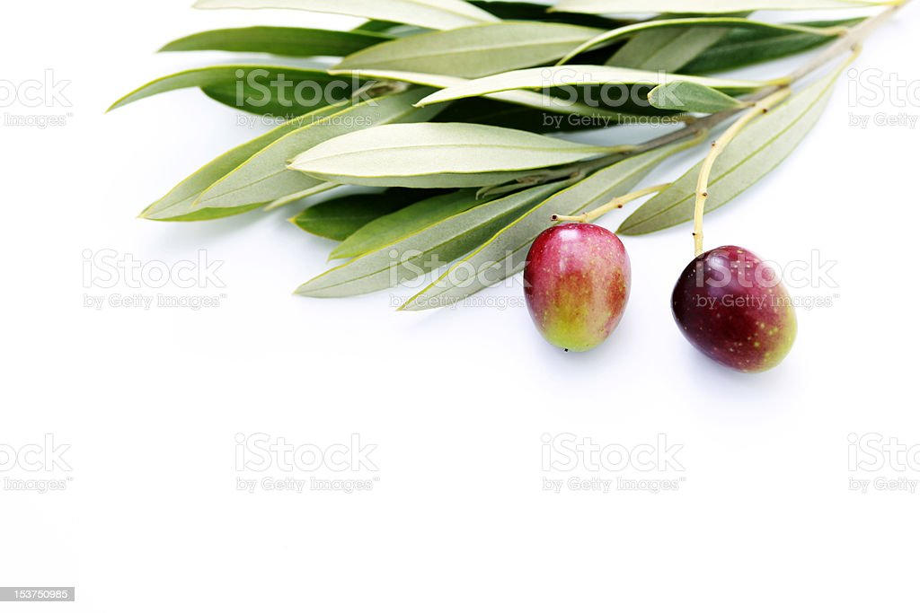 bunch of olives royalty-free stock photo