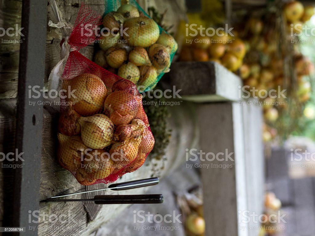 Bunch of onions on old wooden wall royalty-free stock photo