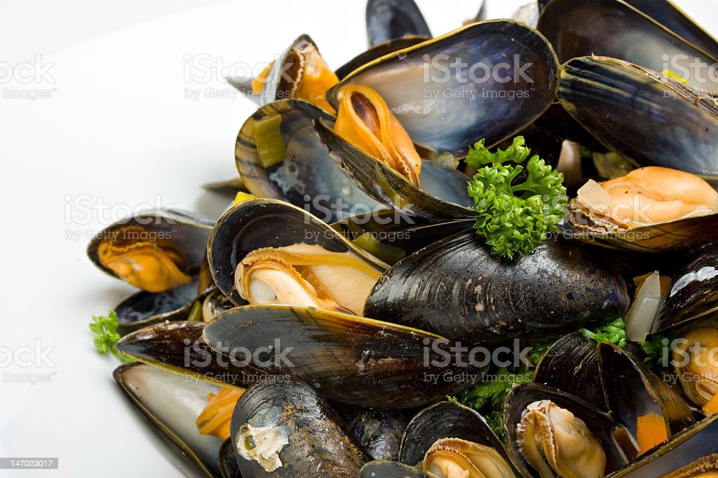 A bunch of opened mussels on a white background stock photo