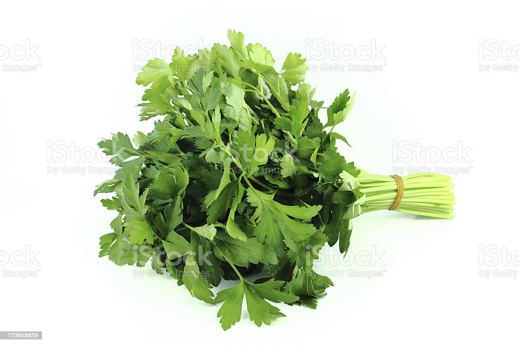 bunch of parsley royalty-free stock photo