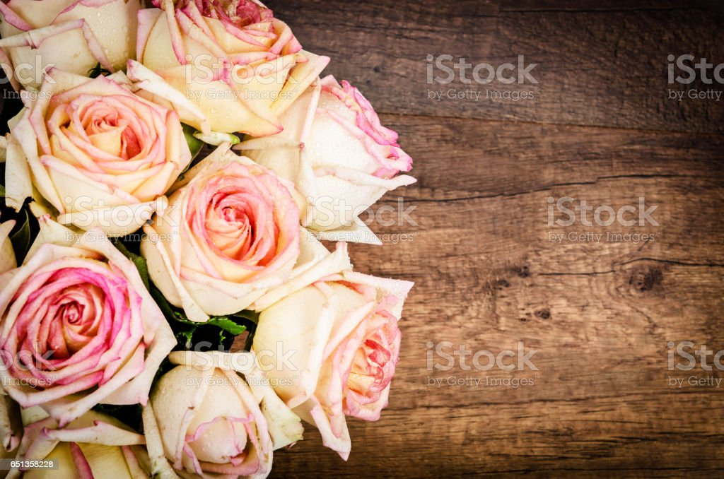 Bunch of pink rose stock photo