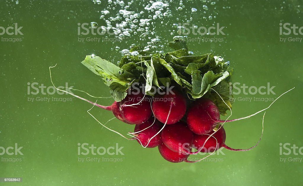 Bunch of radishes dropped into water stock photo