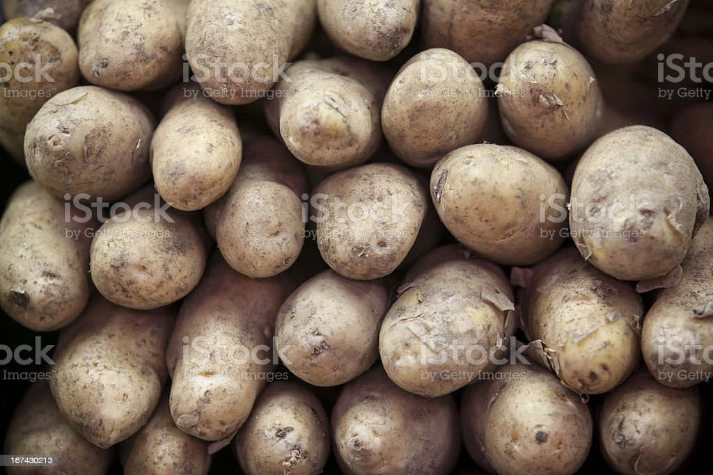 Bunch of Raw Russet Potatoes at a Market stock photo