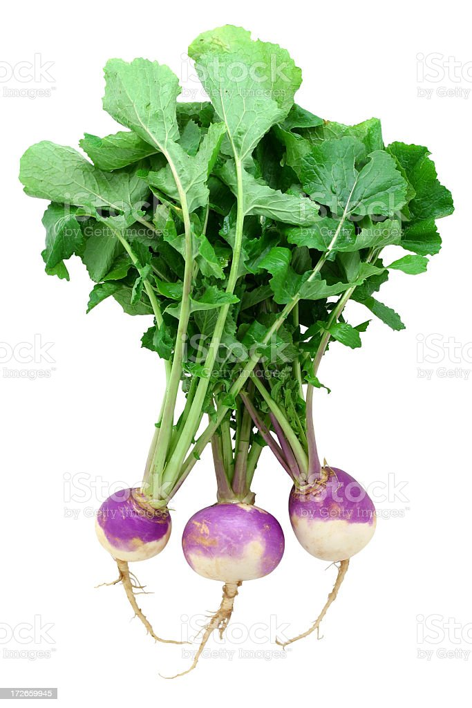 A bunch of raw turnips with leaves stock photo