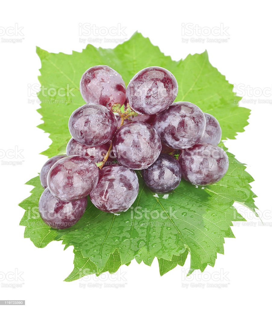 Bunch of red grapes with water drops stock photo