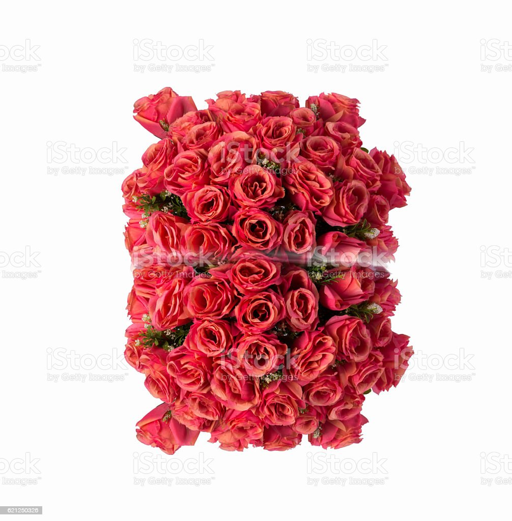Bunch of roses isolated on white stock photo
