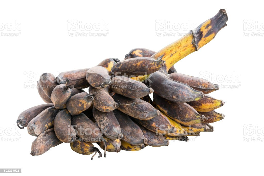 bunch of rotten banana isolated on white stock photo