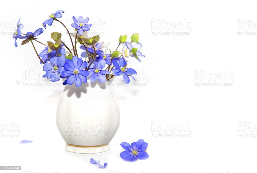 Bunch  of spring flowers royalty-free stock photo