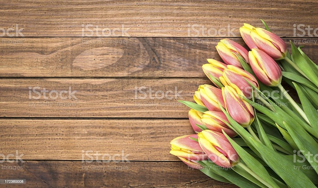 bunch of spring tulips royalty-free stock photo