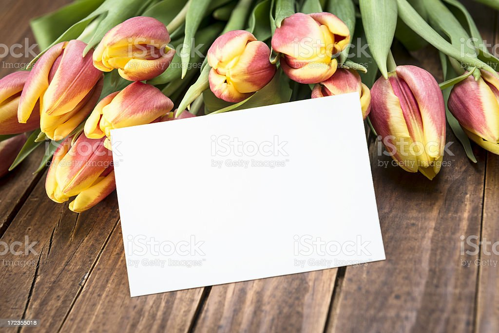 bunch of spring tulips with greetings card royalty-free stock photo
