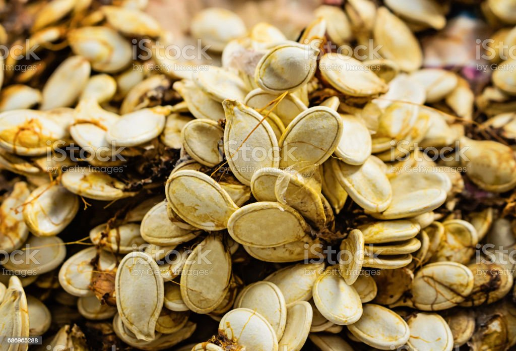 Bunch of sqash seeds stock photo
