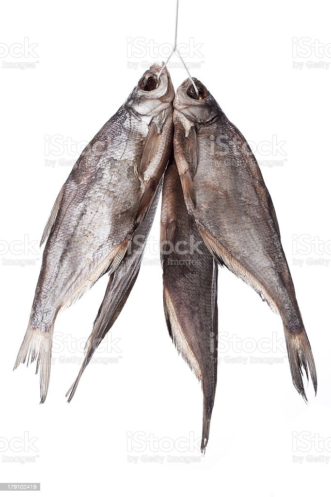 bunch of stockfish royalty-free stock photo