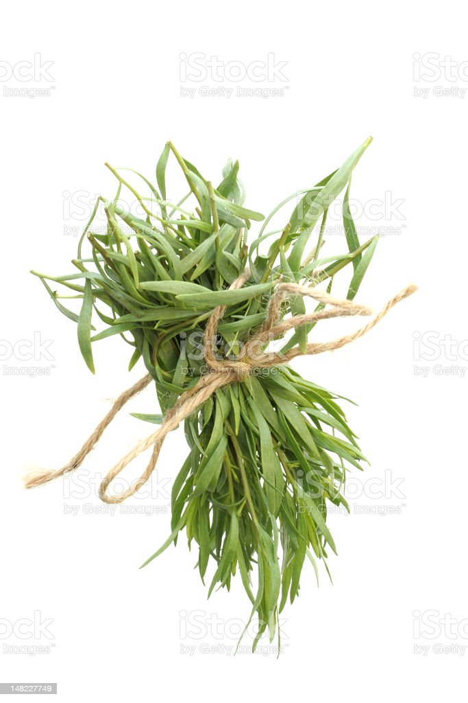Bunch of tarragon stock photo