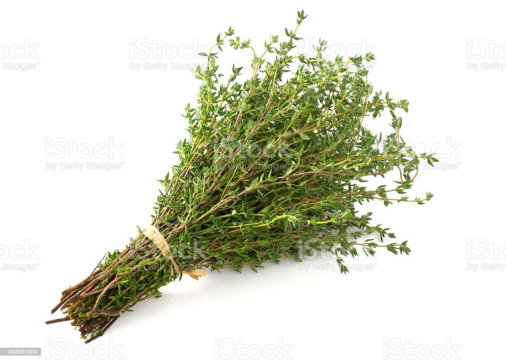 bunch of thyme stock photo