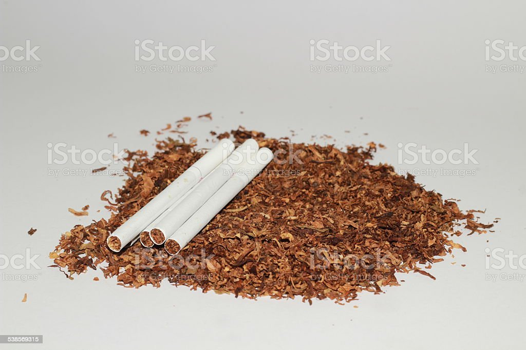 Bunch of tobacco isolated on white background stock photo