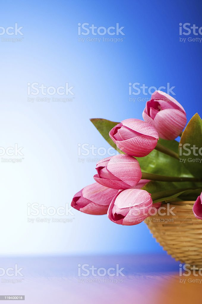 Bunch of tulip flowers on the table stock photo