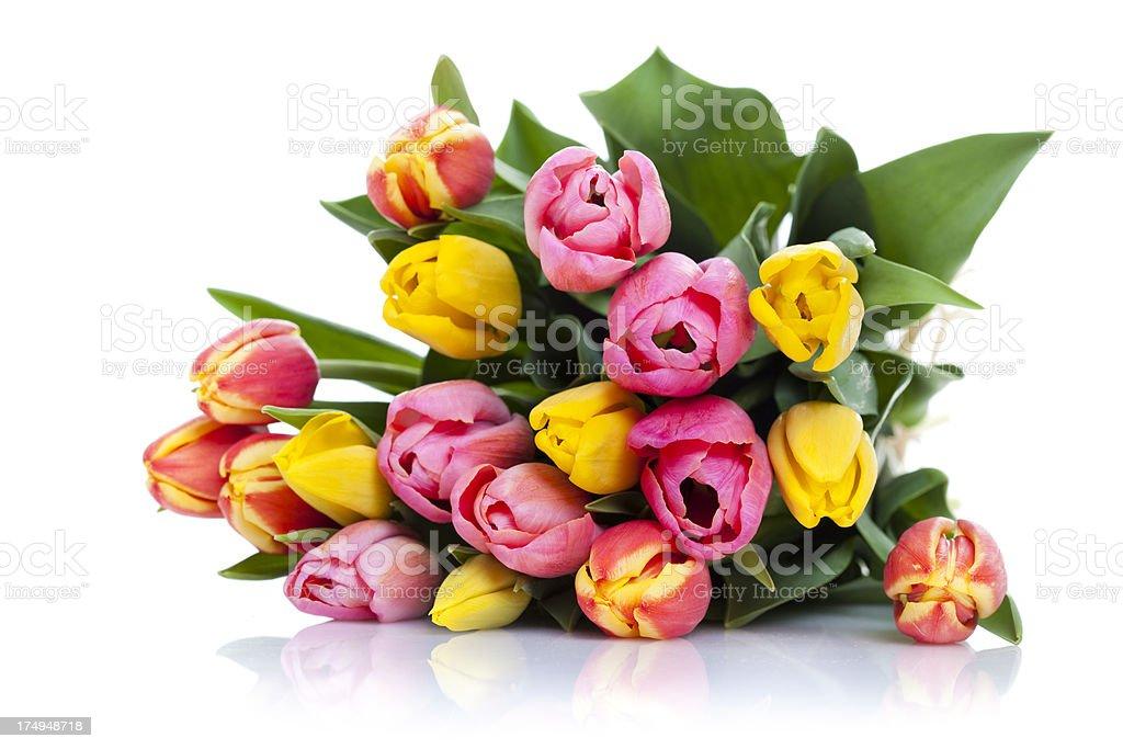 Bunch of Tulpis stock photo