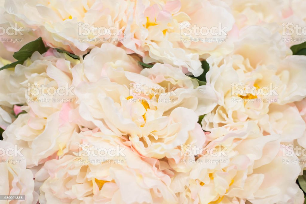 Bunch of two tone artificial flowers for background. stock photo
