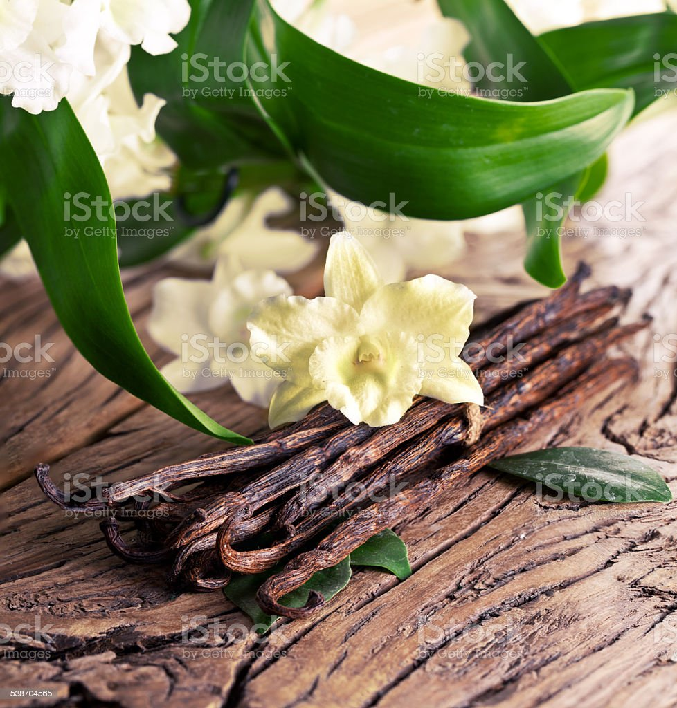 Bunch of vanilla sticks and flower. stock photo