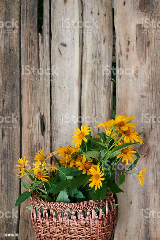 Bunch of yellow flowers in wicker basket over wooden background stock photo