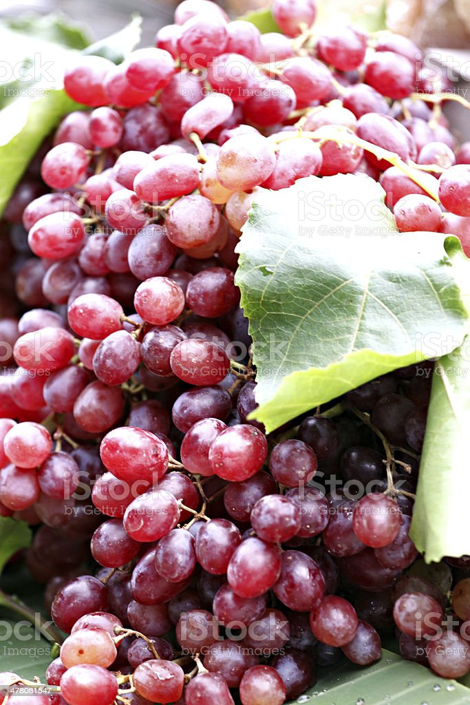 Bunches of Red grapes. royalty-free stock photo