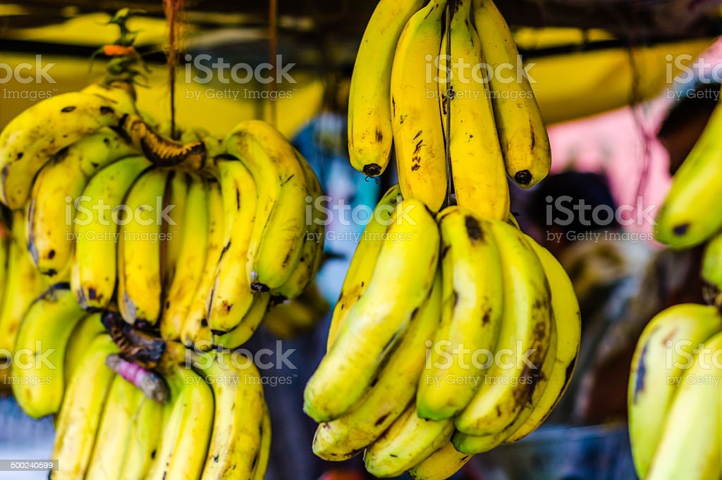 Bunches stock photo